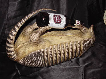 Armadillo drinking beer.  Click to Order Yours